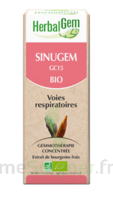 Herbalgem Sinugem Solution buvable bio Fl cpte-gttes/30ml à BRETEUIL